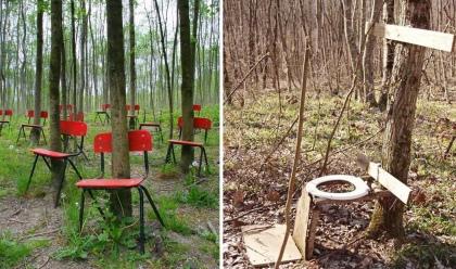 gestión_forestal COMPO 02